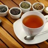 دمنوش چای سبز – خواص چای سبز