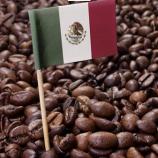 فرهنگ قهوه در مکزیک