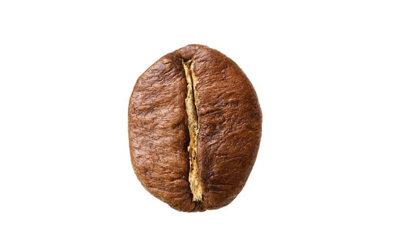 آشنایی با قهوه ربوستا